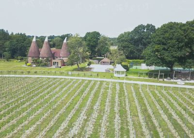 Oastbrook Vineyard